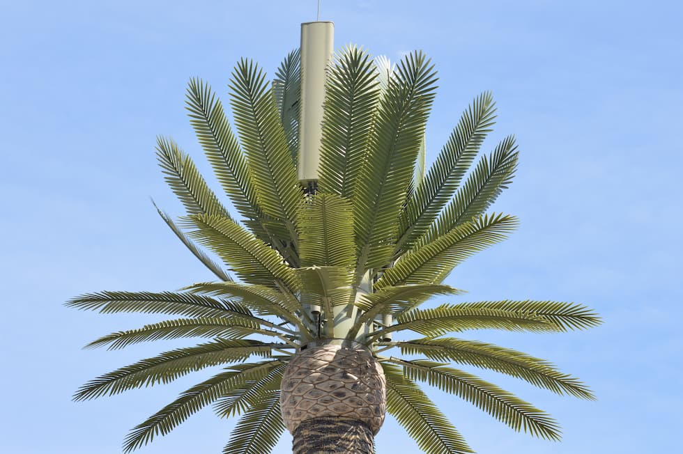 Antenna Free a forma di palma